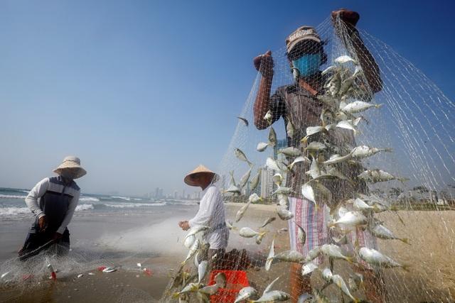 Sức bật của nền kinh tế Việt Nam trong khủng hoảng Covid-19 - 1