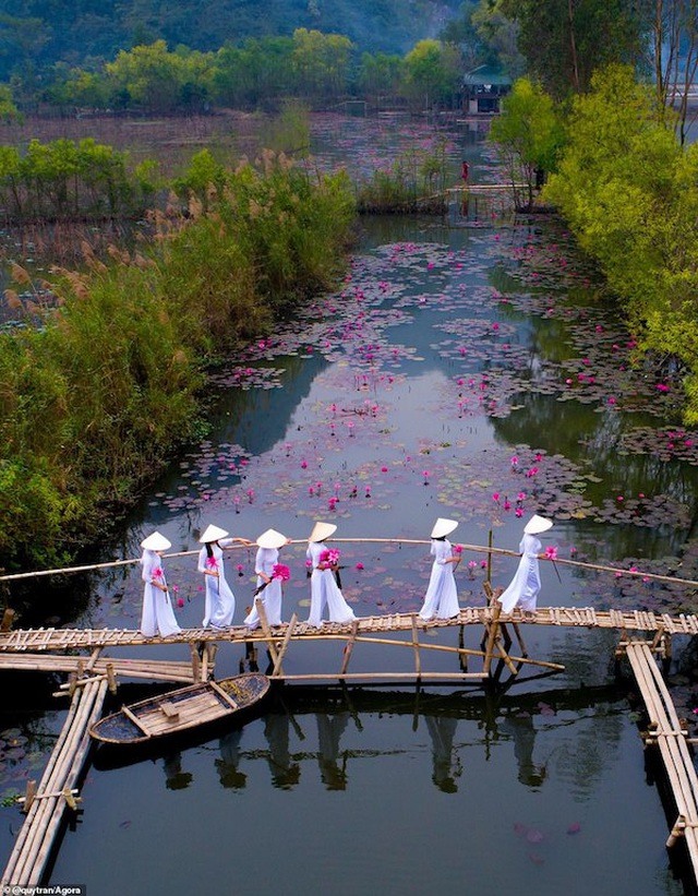 Ảnh Suối Yến của Việt Nam đạt giải nhất cuộc thi Nhiếp ảnh mùa xuân 2020 - 1