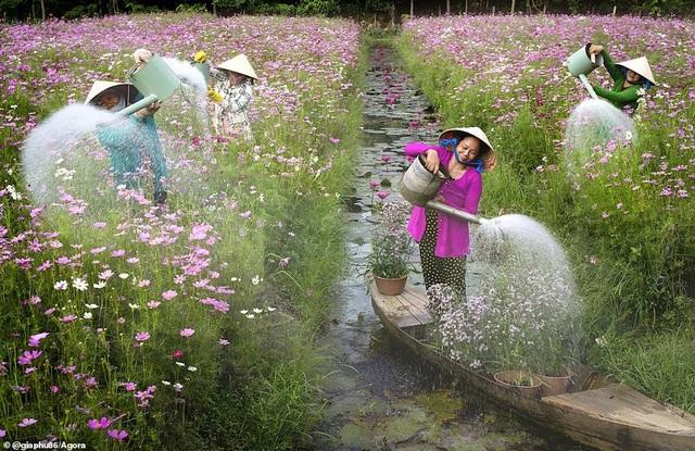 Ảnh Suối Yến của Việt Nam đạt giải nhất cuộc thi Nhiếp ảnh mùa xuân 2020 - 2