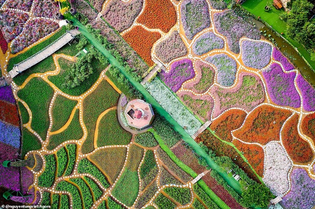 Ảnh Suối Yến của Việt Nam đạt giải nhất cuộc thi Nhiếp ảnh mùa xuân 2020 - 7