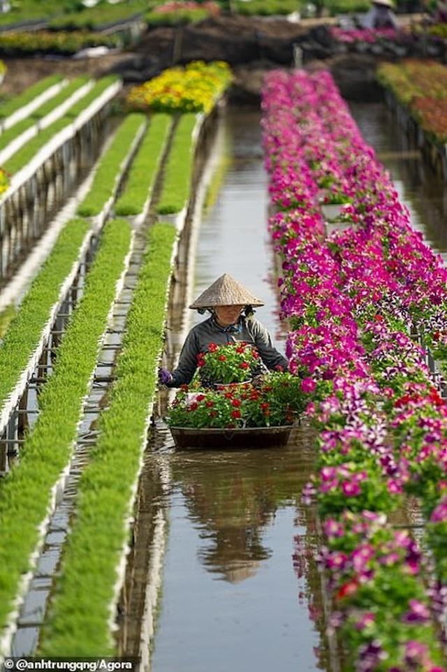 Ảnh Suối Yến của Việt Nam đạt giải nhất cuộc thi Nhiếp ảnh mùa xuân 2020 - 8