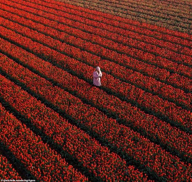 Ảnh Suối Yến của Việt Nam đạt giải nhất cuộc thi Nhiếp ảnh mùa xuân 2020 - 10
