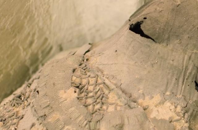 """Khám phá """"Thành phố của người chết"""" thời Ai Cập cổ đại - 12"""