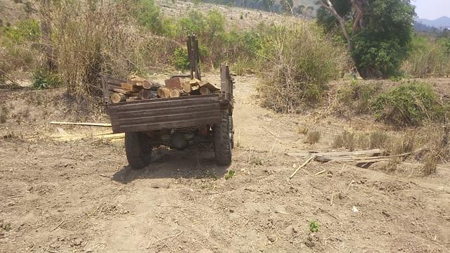 """Những khoảnh rừng bị """"cạo trọc"""" trong vùng giáp ranh Ia Pa tại Gia Lai - 2"""