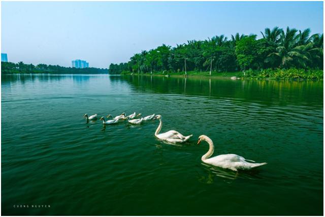 Dự án căn hộ cao cấp Ecopark có hồ cảnh quan hơn 50 ha - 3