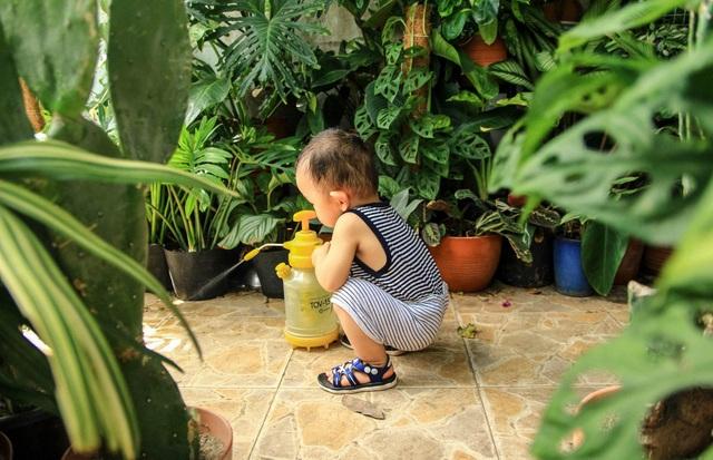 Người mẹ Đà Nẵng chăm chút khu vườn 18m2 đẹp như mơ tặng con trai - 8
