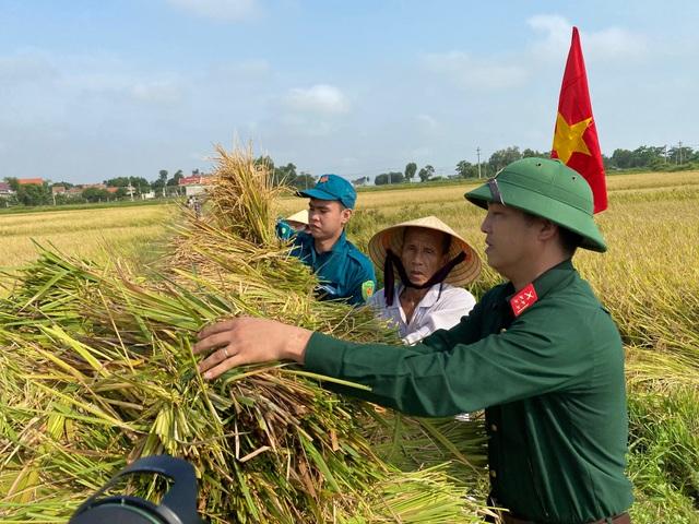 Bộ đội căng mình giữa nắng nóng giúp dân gặt lúa, sửa nhà - 2