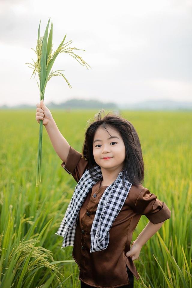 Bé gái xinh như thiên thần trên cánh đồng mùa lúa trổ bông - 3