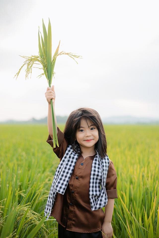 Bé gái xinh như thiên thần trên cánh đồng mùa lúa trổ bông - 8