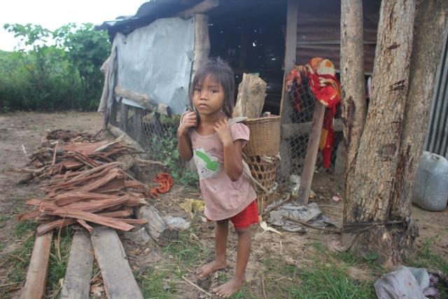 Thương những đứa trẻ vô tội đói nheo nhóc sống chui trong lều tạm - 2