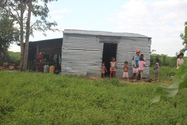 Thương những đứa trẻ vô tội đói nheo nhóc sống chui trong lều tạm - 5