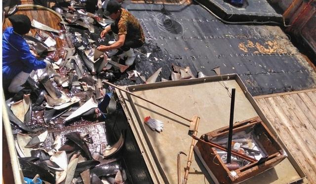 Ngư dân Indonesia tố tàu cá Trung Quốc ngược đãi, vắt kiệt sức lao động - 2