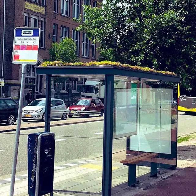 Hà Lan phủ xanh mái nhà chờ xe buýt cho loài ong trú ẩn - 7