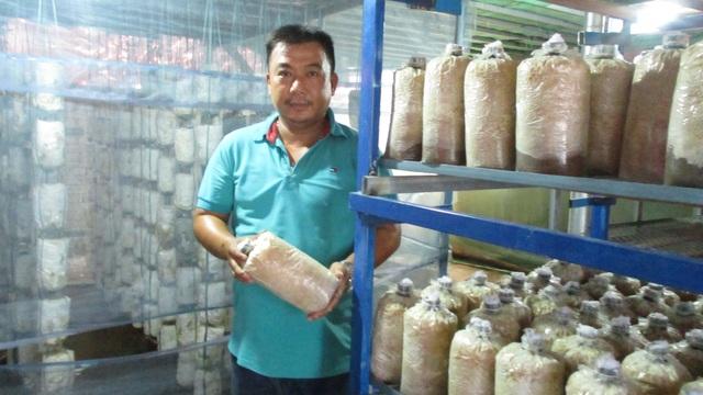 Quảng Nam: U40 xứ trồng nấm sò thu tiền rủng rỉnh quanh năm - 1