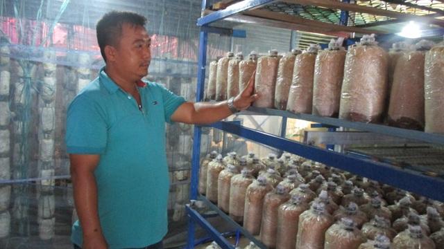 Quảng Nam: U40 xứ trồng nấm sò thu tiền rủng rỉnh quanh năm - 3