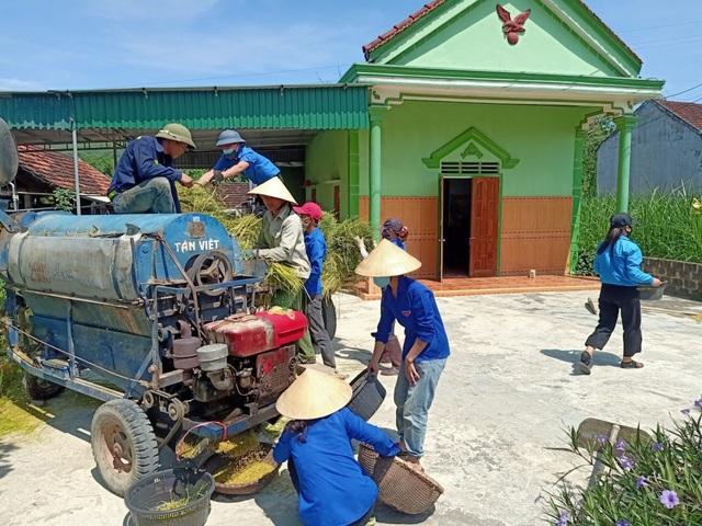 Thanh niên tình nguyện xứ Nghệ đội nắng giúp dân thu hoạch lúa mùa - 3
