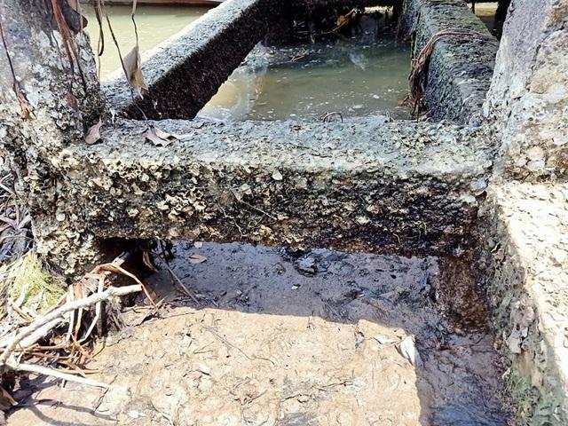 Cầu tàu xuống cấp thê thảm, nguy cơ đổ sập - 3
