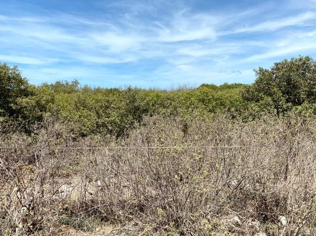 Vũng Tàu: Nhiều hộ dân ròng rã đòi bồi thường 5,4 ha đất suốt 10 năm - 1
