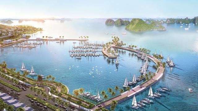 Bất động sản Quảng Ninh 2020 - Nhà đầu tư gọi tên Cẩm Phả - 2