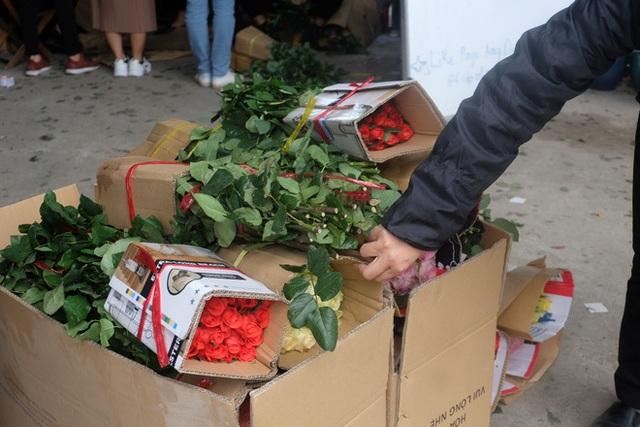 Hoa cúc xanh khổng lồ đắt gấp 20 lần hàng chợ có gì đặc biệt mà gây sốt? - 3