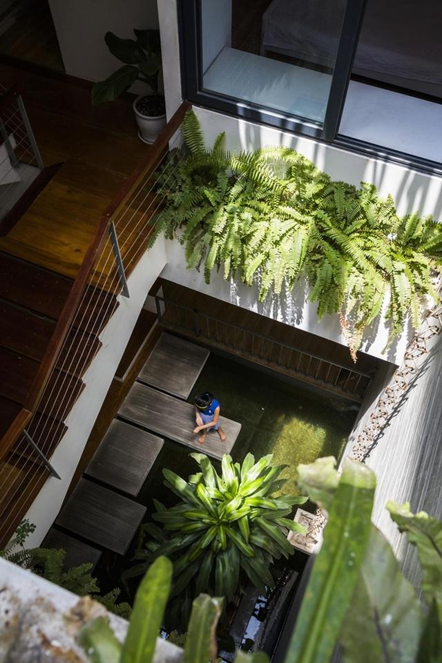 Ngỡ ngàng biệt thự ở Đà Nẵng xây cả công viên tuyệt đẹp trên sân thượng - 1