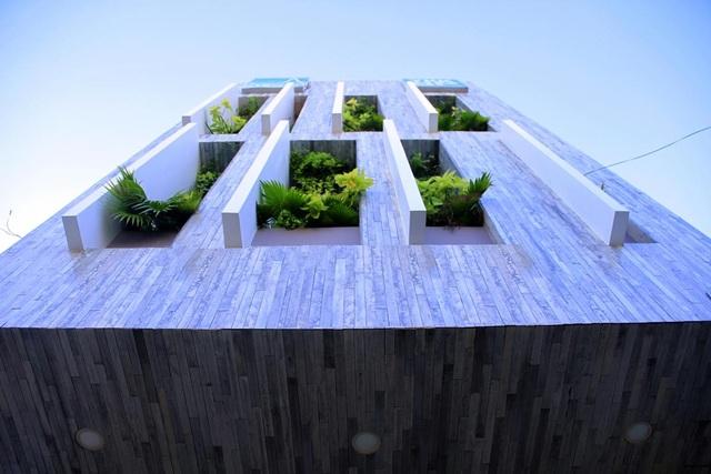 Ngỡ ngàng biệt thự ở Đà Nẵng xây cả công viên tuyệt đẹp trên sân thượng - 2