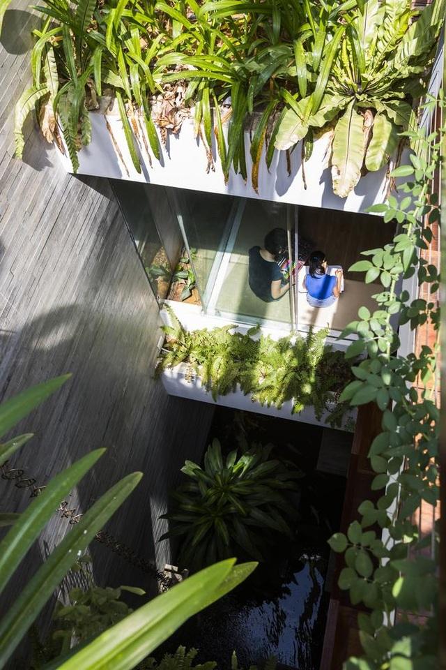 Ngỡ ngàng biệt thự ở Đà Nẵng xây cả công viên tuyệt đẹp trên sân thượng - 9