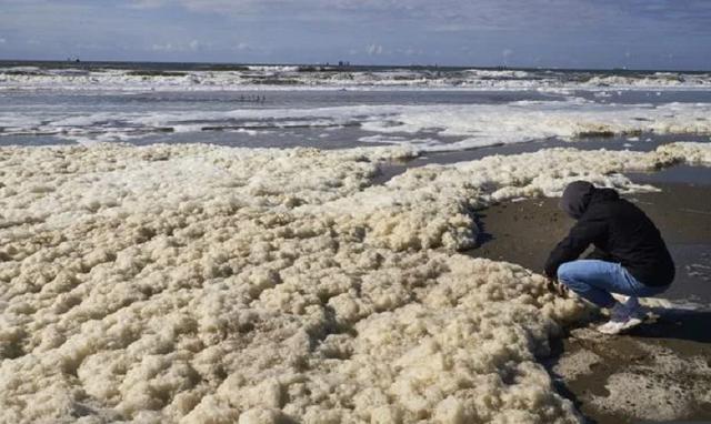 Bọt biển khổng lồ giết chết 5 người đi lướt sóng - 4