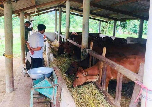 Định hướng nghề cho thanh niên dân tộc thiểu số tại Thừa Thiên Huế - 3