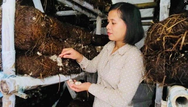 Định hướng nghề cho thanh niên dân tộc thiểu số tại Thừa Thiên Huế - 2