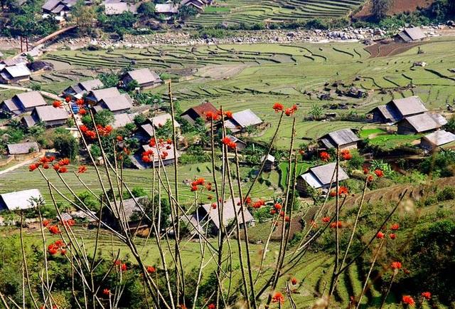 Những bản làng vùng cao đẹp như tranhvẽ - 3