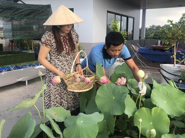 Doanh nhân 7x đào ao trồng sen đẹp hút hồn trên sân thượng 400m2 ở Sài Gòn - 2