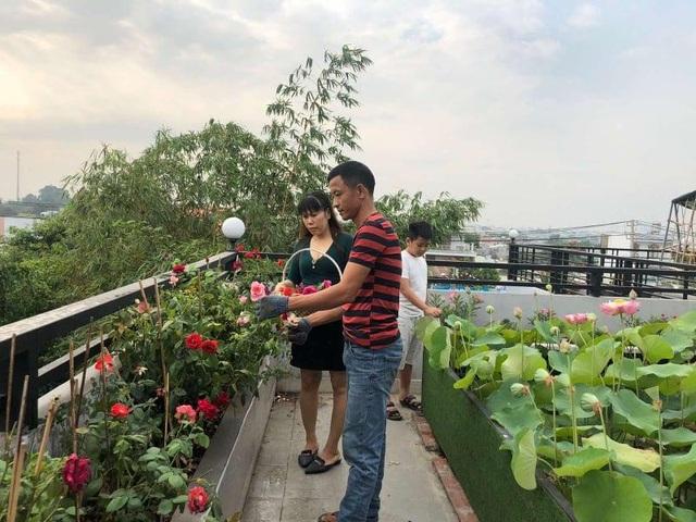 Doanh nhân 7x đào ao trồng sen đẹp hút hồn trên sân thượng 400m2 ở Sài Gòn - 7