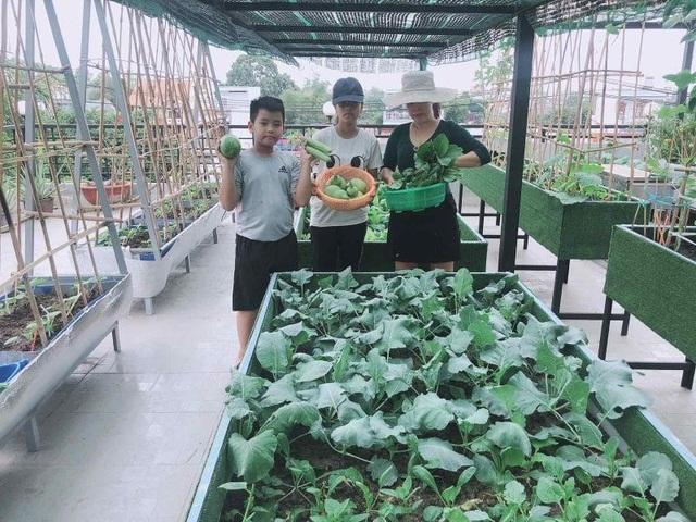 Doanh nhân 7x đào ao trồng sen đẹp hút hồn trên sân thượng 400m2 ở Sài Gòn - 12