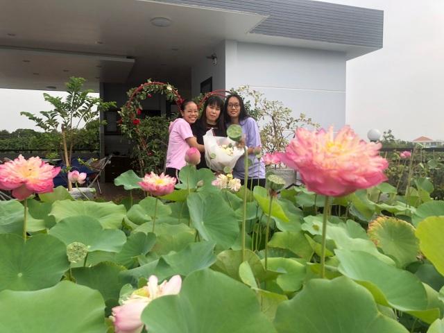 Doanh nhân 7x đào ao trồng sen đẹp hút hồn trên sân thượng 400m2 ở Sài Gòn - 5