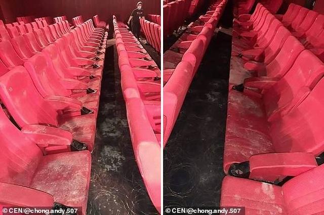 Rạp chiếu phim nấm mốc phủ đầy sau quãng thời gian đóng cửa - 1