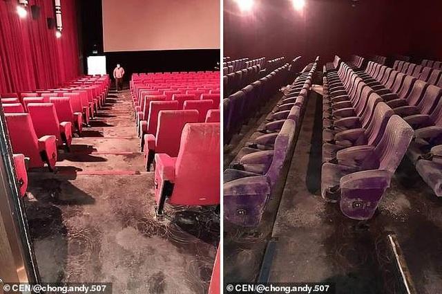 Rạp chiếu phim nấm mốc phủ đầy sau quãng thời gian đóng cửa - 2