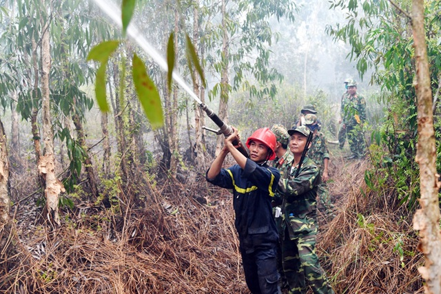 2 ngày vất vả dập đám cháy rừng ở Kiên Giang - 1