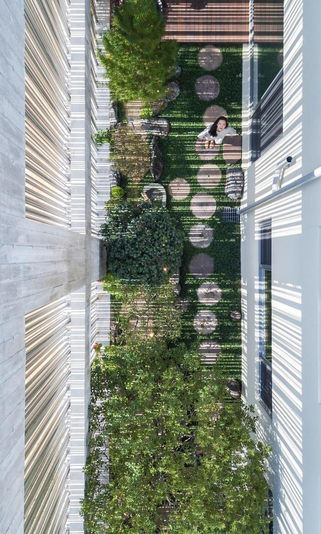 Khu vườn bí mật bên trong biệt thự thép độc đáo ở Hàn Quốc - 5