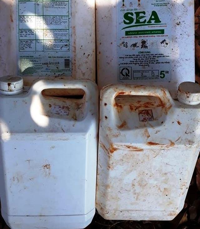 Dân tố hàng ngàn cây sầu riêng giống bị chết khô sau khi bón phân - 4