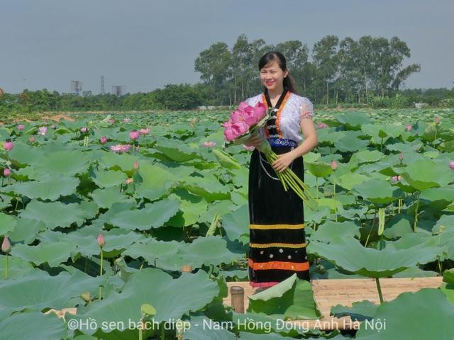 Hồ sen Bách Diệp - Đông Anh: Nơi níu chân du khách Hà Thành - 4
