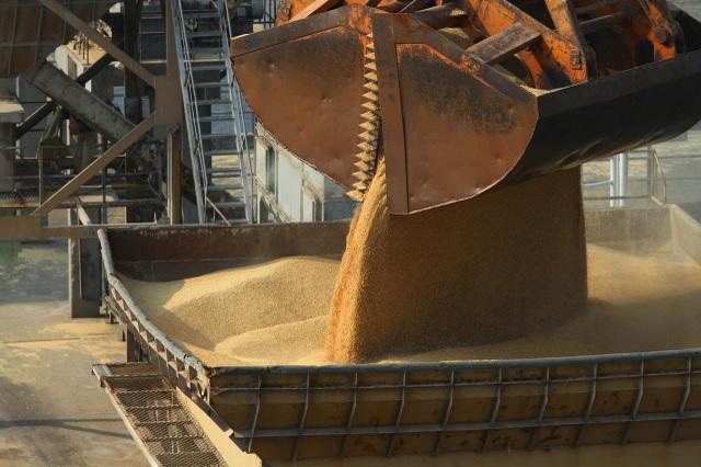 Trung Quốc đánh thuế 80% với lúa mạch Australia giữa căng thẳng Covid-19 - 1