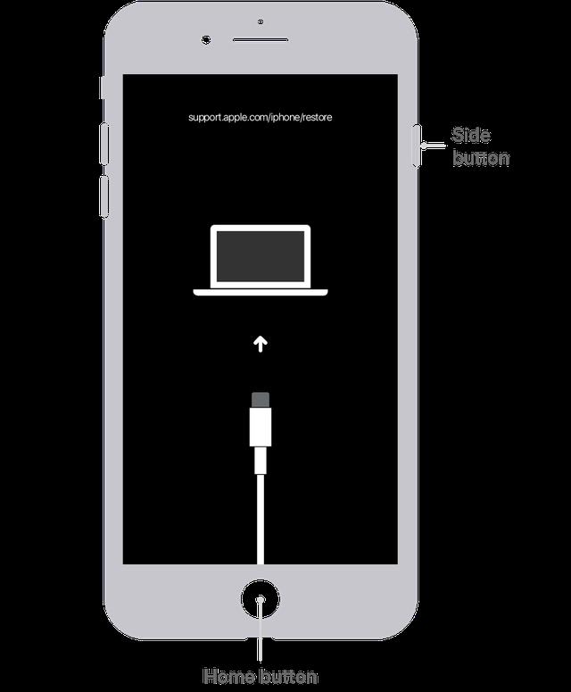 Xử lý thế nào nếu quên mật khẩu iPhone hoặc iPhone bị khoá? - 4