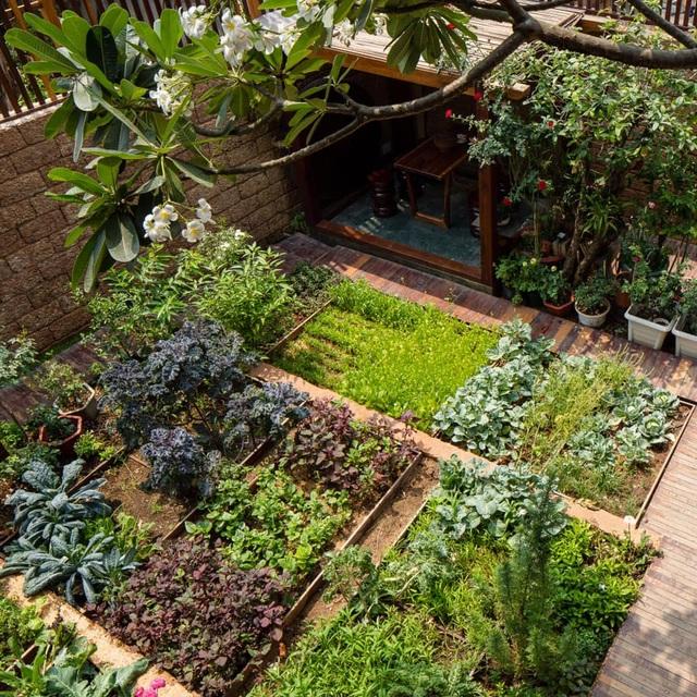 """Cận cảnh nhà vườn """"trốn"""" khói bụi đẹp mê hồn của cặp vợ chồng trẻ ở Sài Gòn - 16"""
