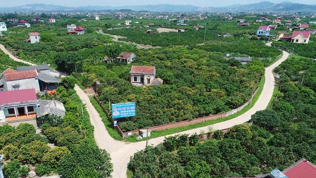 Bắc Giang minh bạch xử lý kết luận thanh tra tại dự án Trường bắn Quốc gia - 2