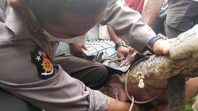 Bắt cá sấu không… răng dìm chết thiếu nữ 17 tuổi - 2