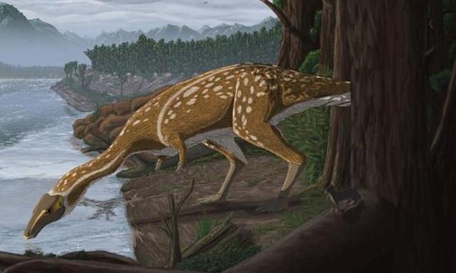 Phát hiện hóa thạch khủng long cực hiếm ở Úc - 1