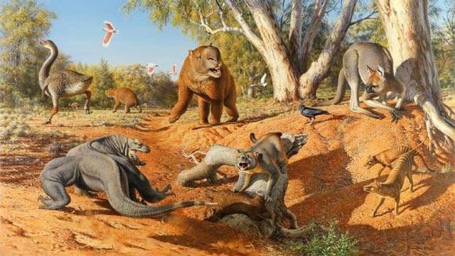 Khí hậu cực đoan làm tuyệt chủng hệ động vật khổng lồ ở Úc và New Guinea - 1