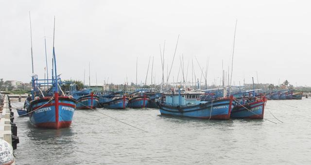 Mở chuyên án điều tra hành vi trục lợi tiền hỗ trợ nhiên liệu tàu cá - 2