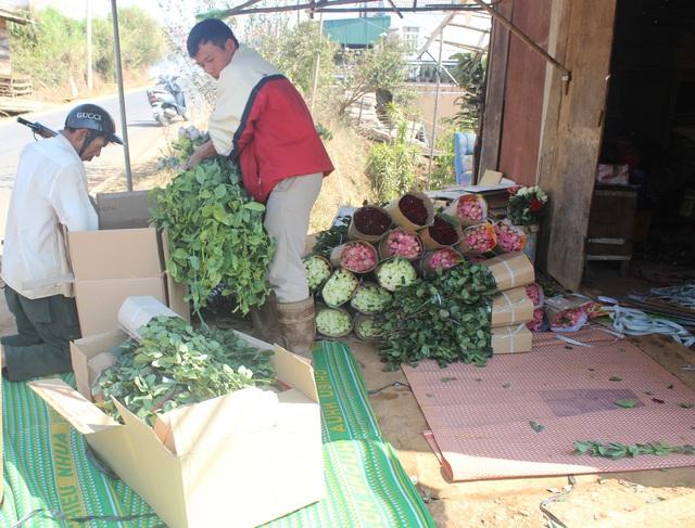 Giá rau, hoa Đà Lạt bật tăng sau dịch Covid-19 - 3
